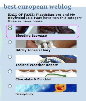 2009 Bloggies Voting