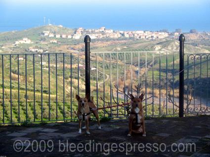 The Logic Of Italian Boys Names Bleeding Espresso Bleeding Espresso