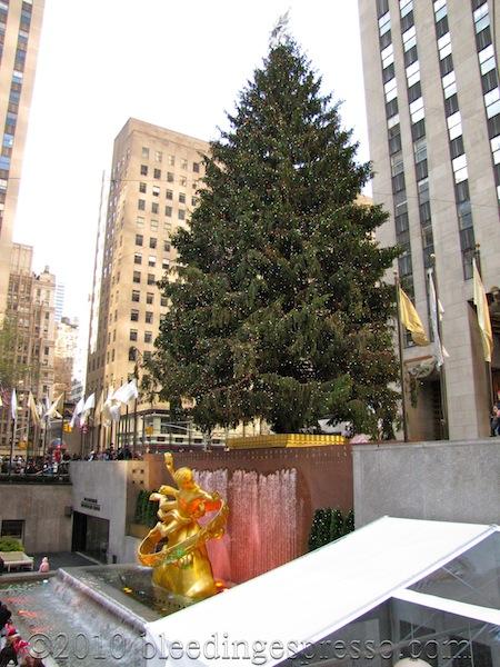 Tree at Rockefeller Center, 2009