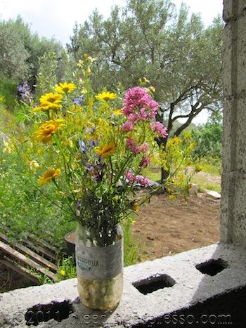 Bouquet of wildflowers in the window